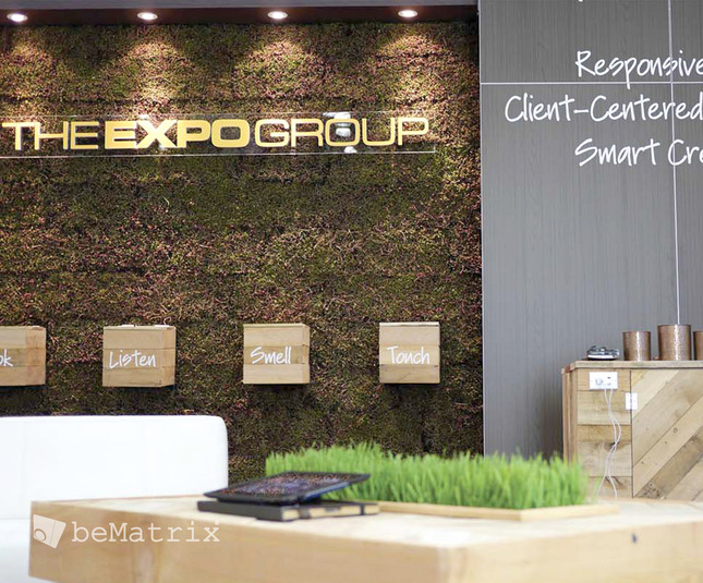 The Expo Group - The Expo Group 2014 - Foto 4
